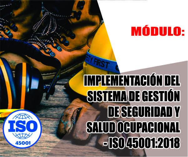 IMPLEMENTACIÓN DEL SISTEMA DE GESTIÓN DE SEGURIDAD Y SALUD OCUPACIONAL - ISO 45001:2018