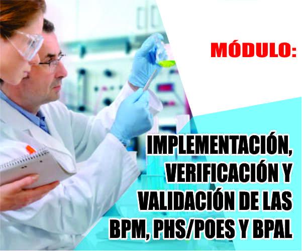 IMPLEMENTACIÓN, VERIFICACIÓN Y VALIDACIÓN DE LAS BPM, PHS/POES Y BPAL