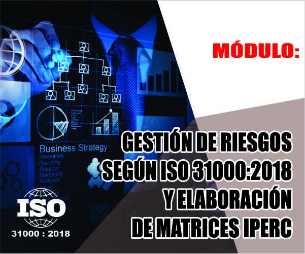 GESTIÓN DE RIESGOS SEGÚN ISO 31000:2018 Y ELABORACIÓN DE MATRICES IPERC