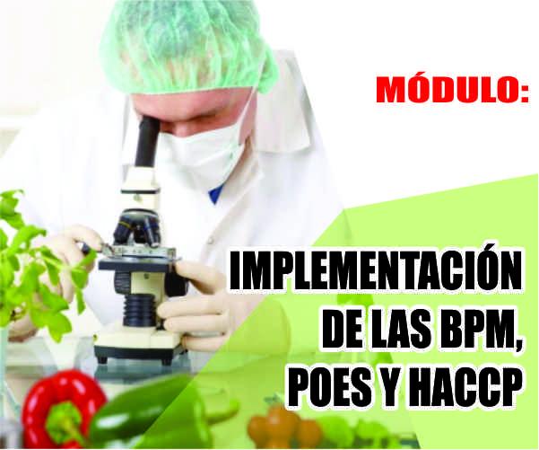MÓDULO: IMPLEMENTACIÓN DE LAS BPM, POES Y HACCP